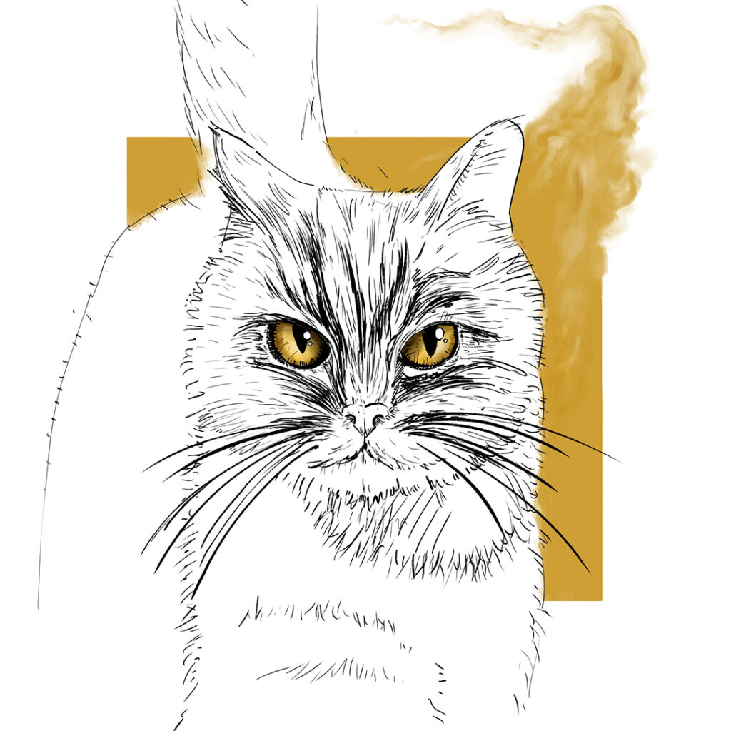 Ilustración para el podcast de FALLEN de Luces en el Horizonte | pablo Uría Ilustrador